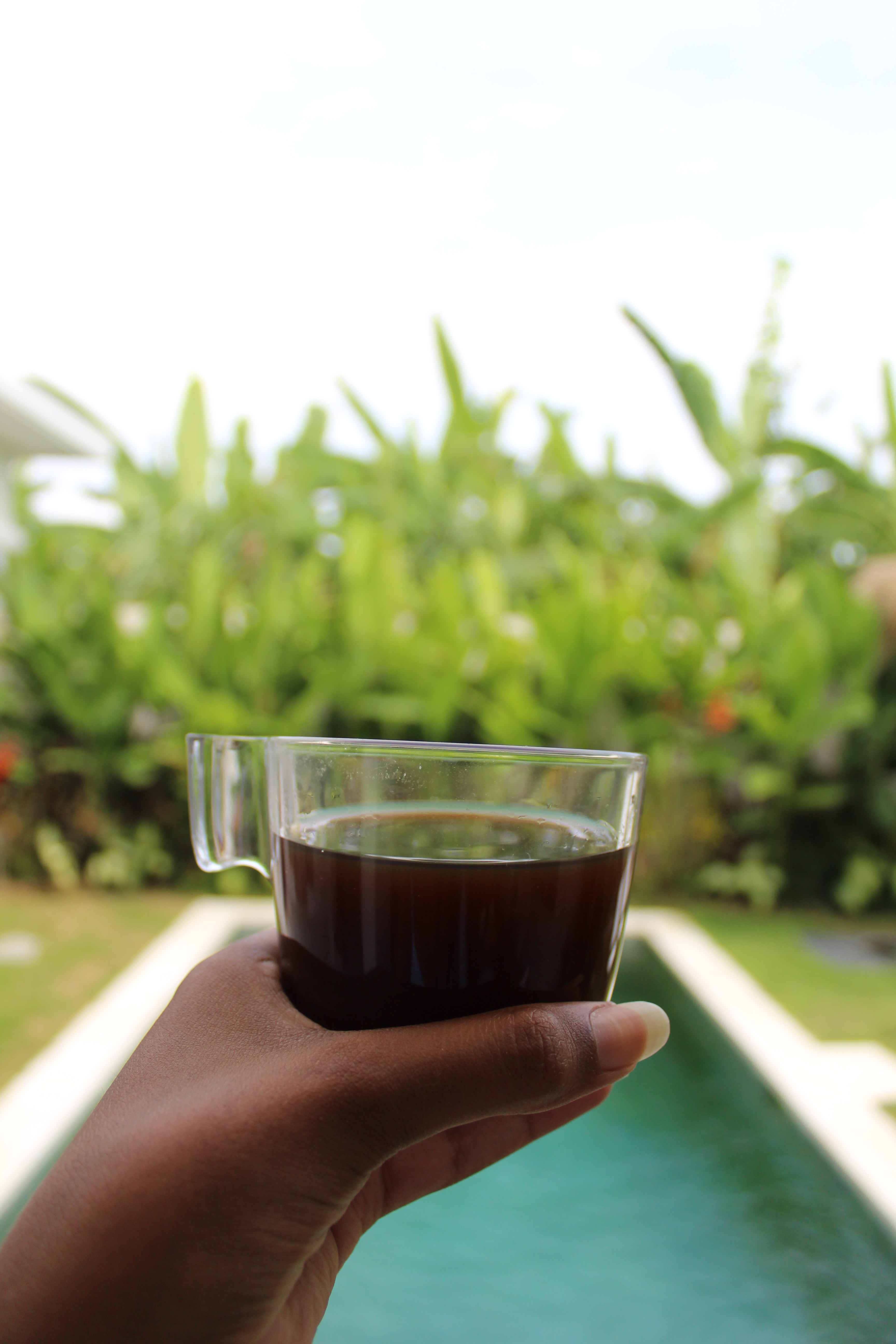 close up of coffee in garden